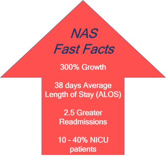 NASFacts
